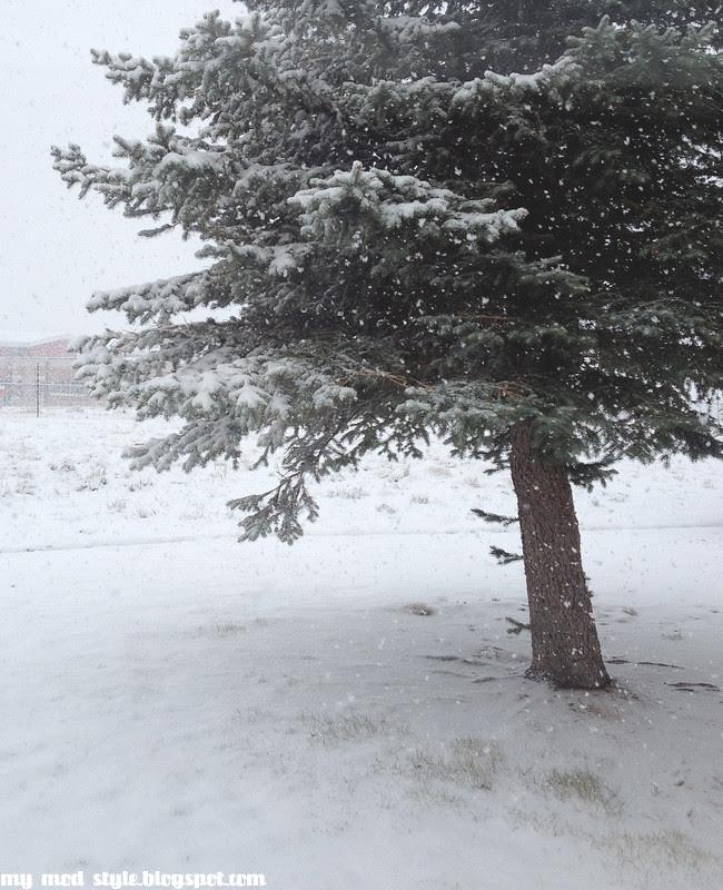 Snow2 10 6 12