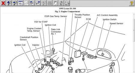 1995 Lexus Engine Diagram Wiring Diagram Fur Note B Fur Note B Agriturismoduemadonne It