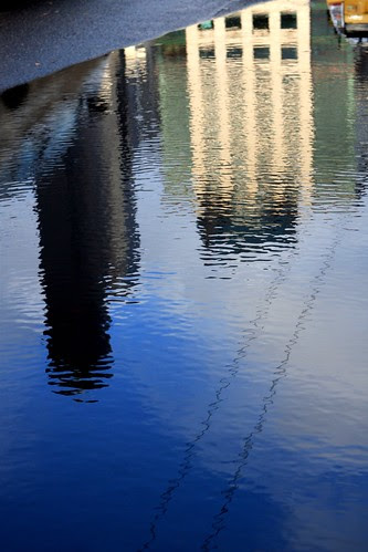Puddle Reflection by Seattle Daily Photo