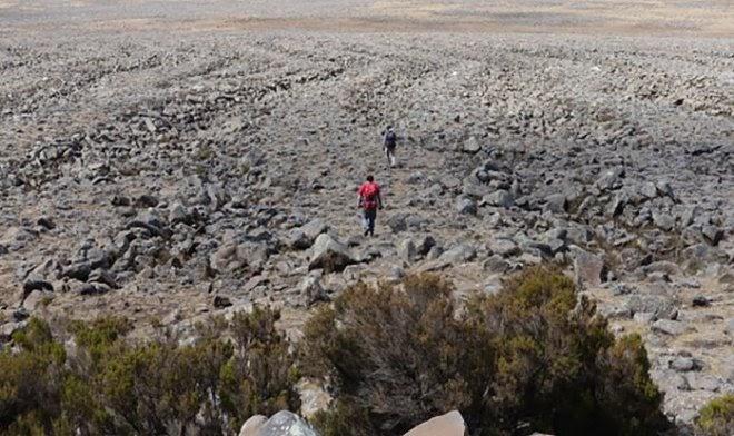 Гигантские «тигровые полосы» из камней в Эфиопии хранят тайну последнего оледенения