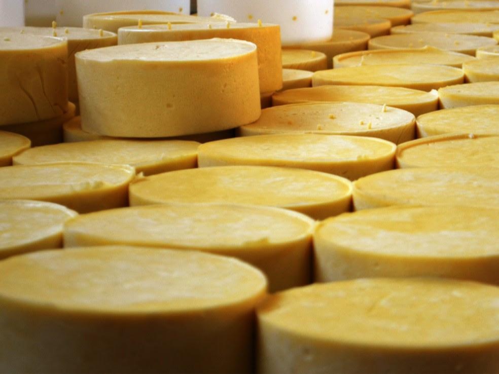 Substância presente em queijos envelhecidos pode prevenir câncer de fígado e fibrose hepática (Foto: Samantha Silva / G1)