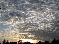 Cloudy November morning