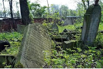 Abandoned Jewish cemetery (illustration)