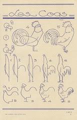 les animaux 47