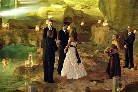 Wedding Venues: Three Reasons to Choose the Zoo!   The