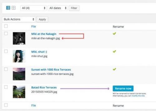Meow Apps Media File Renamer Pro - v4 2 2 NULLED