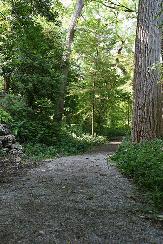 Hegi Garden woodland walk