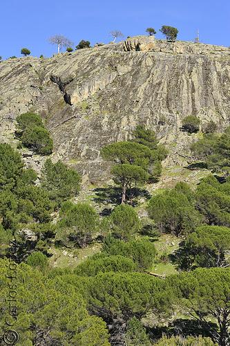 Cerro Yuste