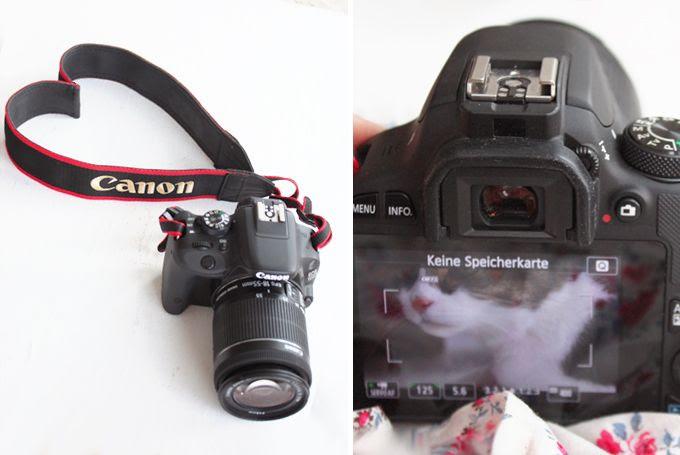 http://i402.photobucket.com/albums/pp103/Sushiina/cityglam/canon44_zps376496ba.jpg
