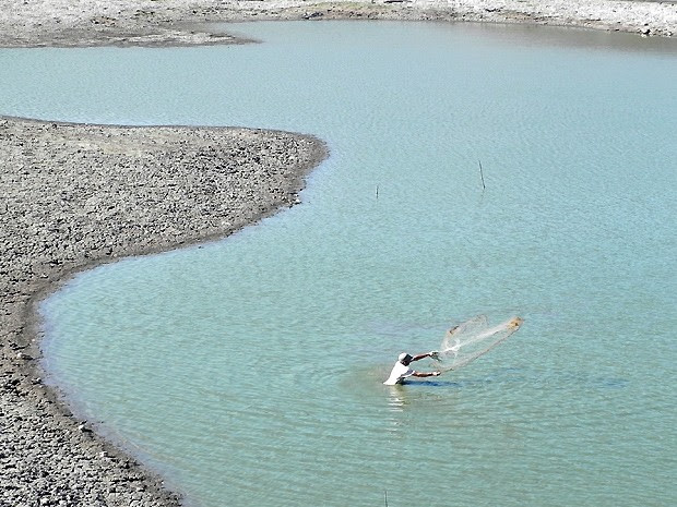 """'Melhor pescar para a gente comer do que deixar os peixes morrerem assim"""" (Foto: Taiguara Rangel/G1)"""