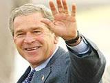Bush: Pushed aside