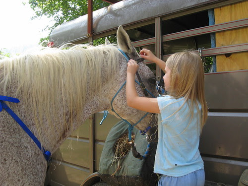 Rinnah putting on the bridle