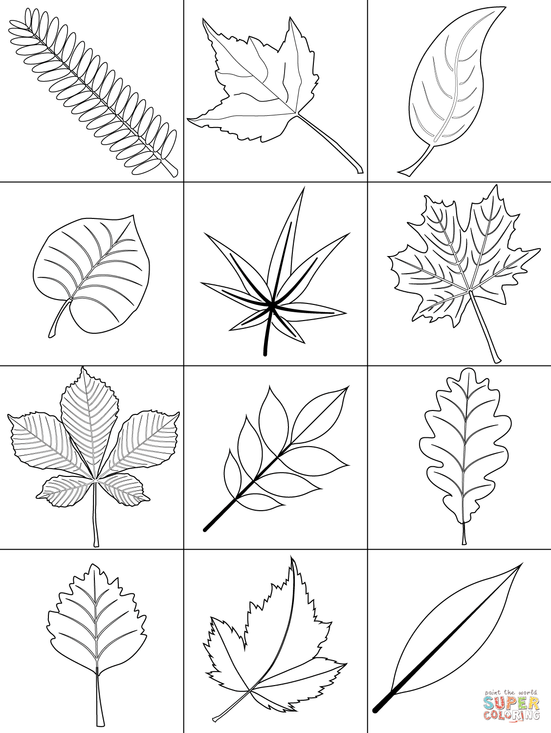 Autumn Leaves coloring page | Free Printable Coloring Pages