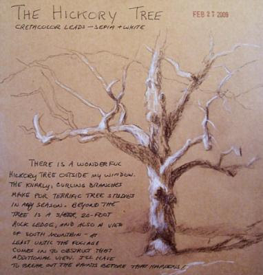 090227-sketch-hickory-tree-600