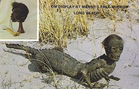 Sinh vật nửa người nửa cá sấu