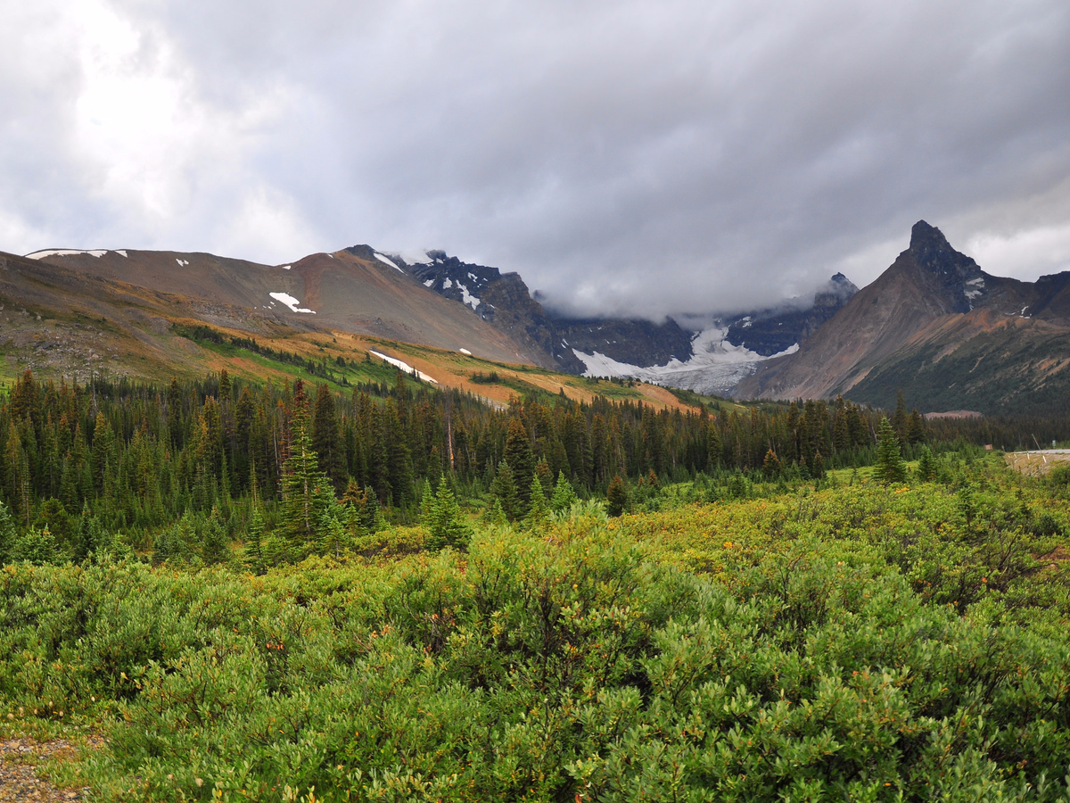 Just a few miles to the north, Jasper National Park offers more than 4,000 square miles of pristine wilderness for hiking and camping.