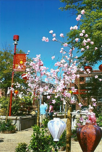 ASEANA Spring Festival, coming April 30, 2011 by Shreveport-Bossier: Louisiana's Other Side