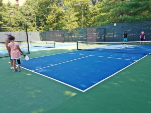 Image result for pickleball courts owen brown