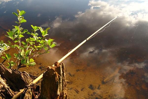 Рыбалка, удочка, универсальная удочка, простая удочка, удочка для рыбалки, ловля на спиннинг, ловля щуки, ловля плотвы, ловля леща, ловля карася, ловля линя, удилище для рыбалки, катушка для удочки