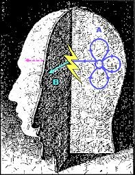 चेतना और नई भौतिकी