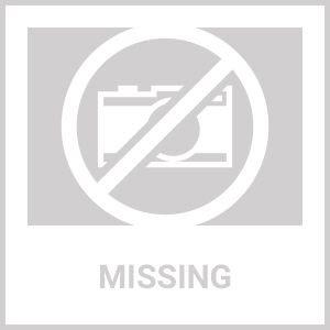 Resultado de imagen para tampa bay lighting logo