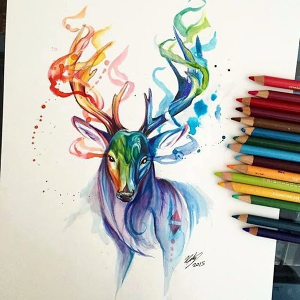 color pencil drawing Examples (2)