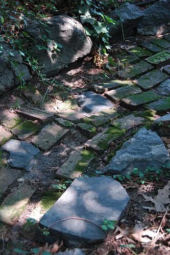 Salvage Path