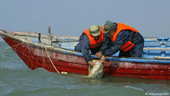 Bildergalerie Iran Kaviar (Getty Images/AFP)