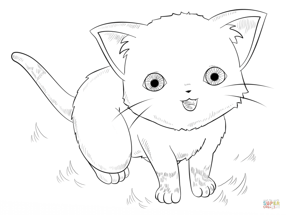 9000 Chibi Cats Coloring Pages For Free