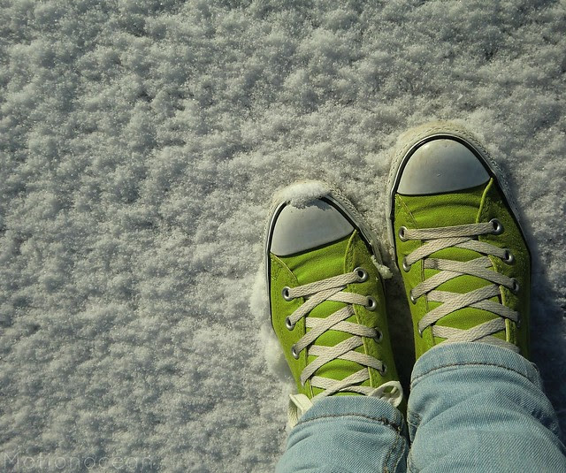 Converse in the snow