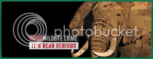 stop-wildlife-crime