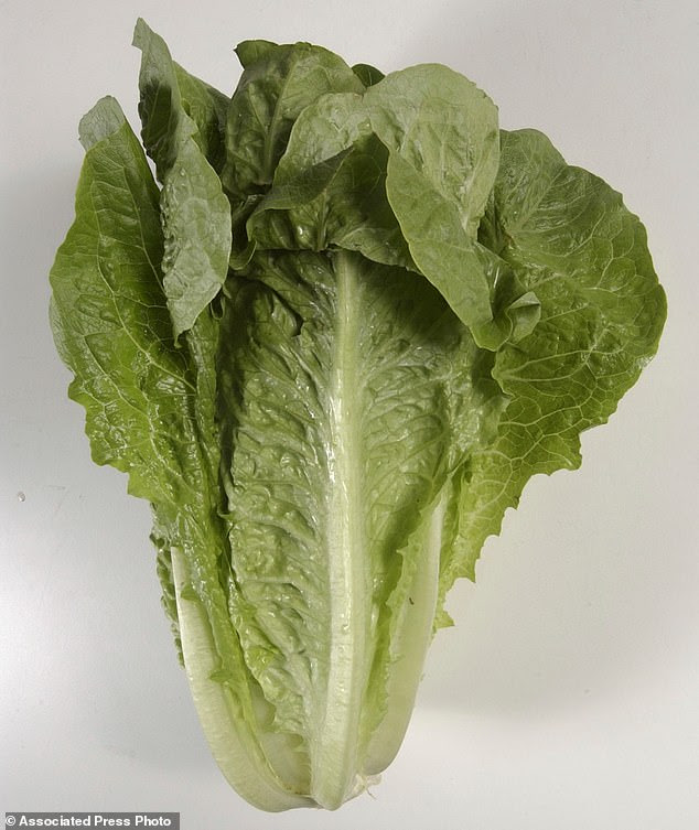The E. coli outbreak traced to romaine lettuce from Arizona has now sickened 149 people in 29 states and claimed the life of at least one person, according to the CDC's latest numbers