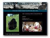 Basset Hounds Kennel Ravenwood's