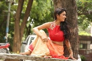 Heroine Pooja Sree
