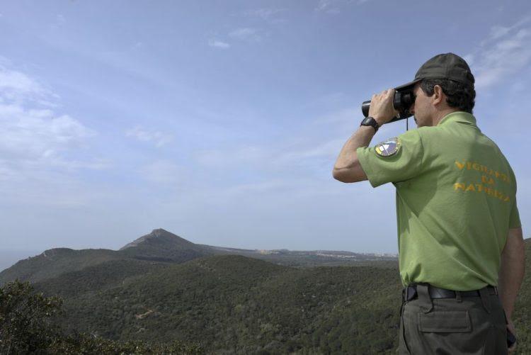 Resultado de imagem para Mais 30 vigilantes da natureza devem estar no terreno no 2.º semestre