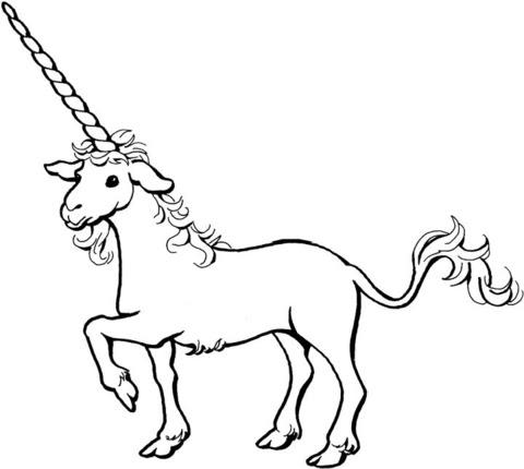 Dibujo De Un Unicornio Para Colorear Dibujos Para Colorear