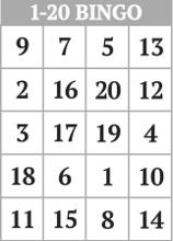 Free Printable Number Bingo Card Generator