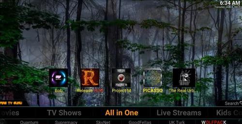 screenshots Fire TV Guru Build Pic 2