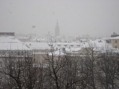 Snow_241108