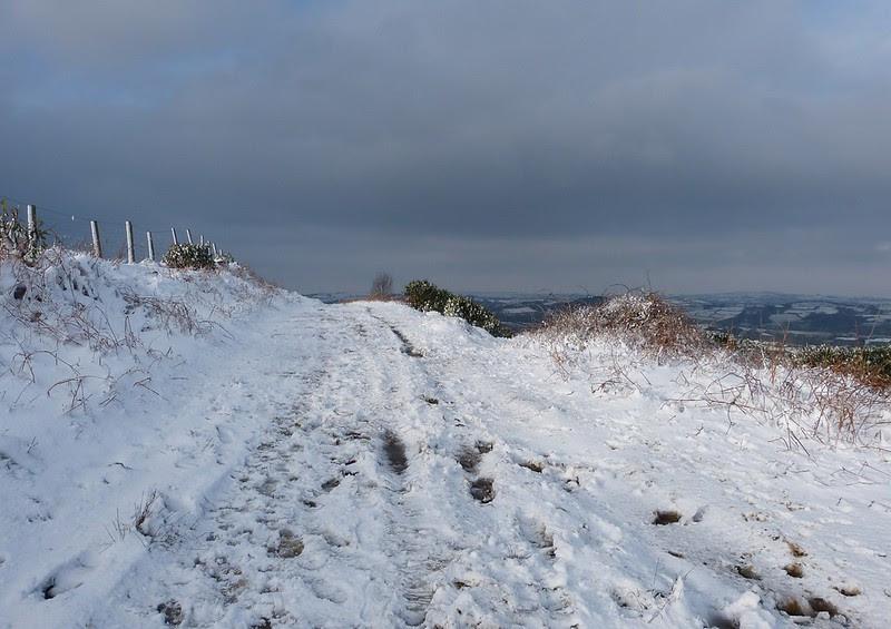 29192 - Snowy Scenes