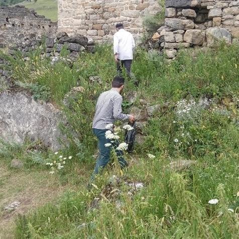 Вгорном районе Ингушетии провели санитарные мероприятия натерриториях архитектурных комплексов