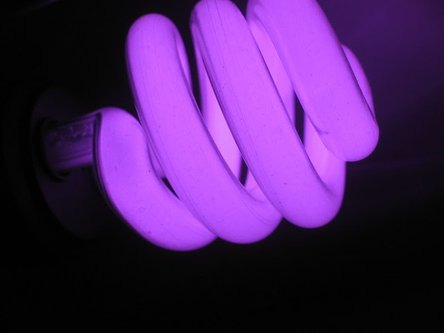 Blacklight bulb in ultraviolet