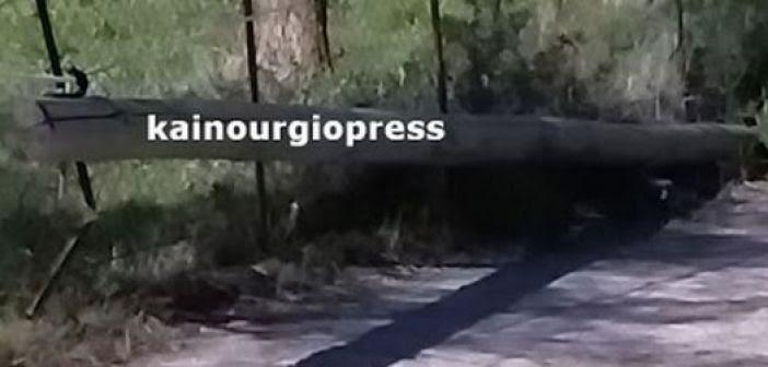 Καινούργιο: Ξεριζώθηκε κολόνα του ΟΤΕ από τους θυελλώδεις ανέμους (ΔΕΙΤΕ ΦΩΤΟ)