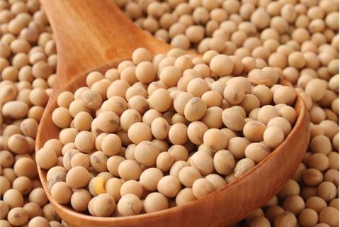 للنحيفات والنحيفين فقط .. أطعمة زيادة الوزن بالصور ..Foods for increasing weight