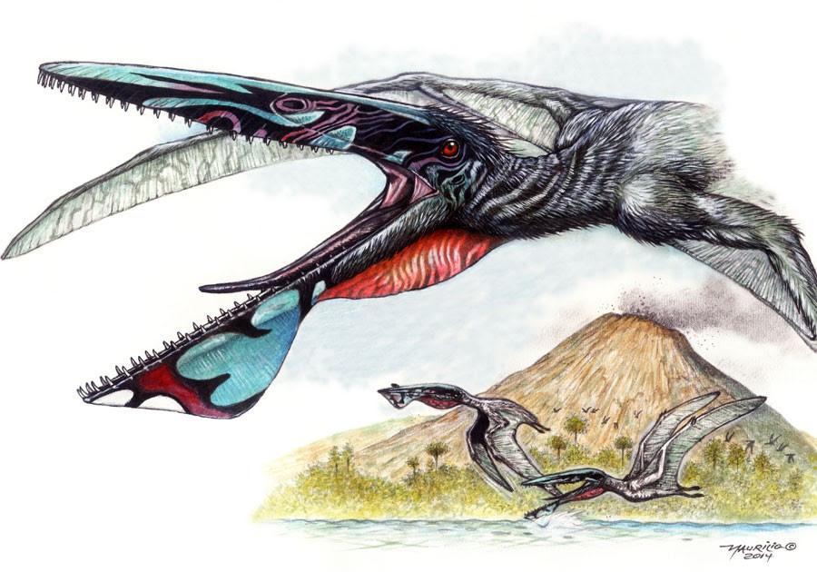 Ilustração que mostra o Ikrandraco avatar, pterossauro que teria vivido há 120 milhões de anos (Foto: Divulgação/Maurílio Oliveira/Museu Nacional/UFRJ)