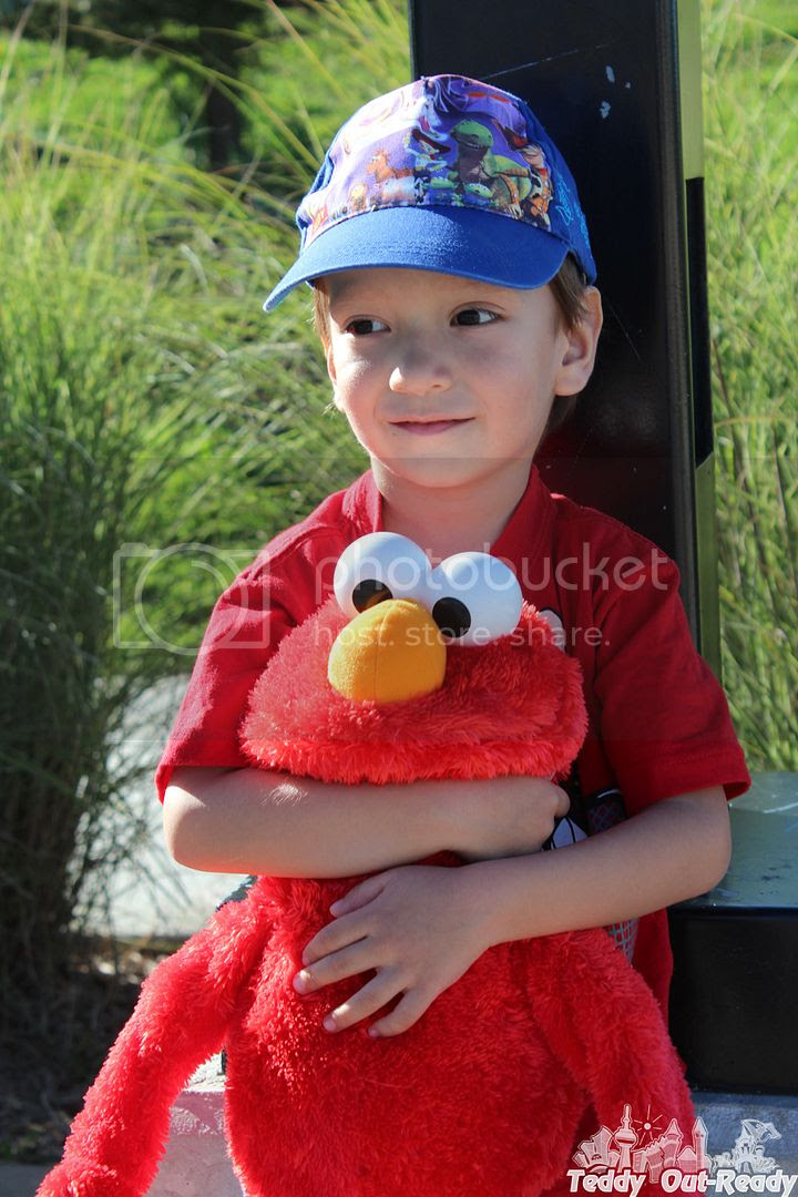 Teddy with Elmo