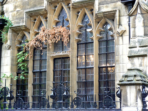 fenêtre dean's yard.jpg