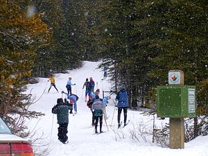 Cross-country skiing in Kananaskis, Alberta (C...