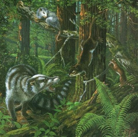 Neozoic, the Era of the Mammals