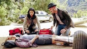 Scorpion Season 4 : Crime Every Mountain